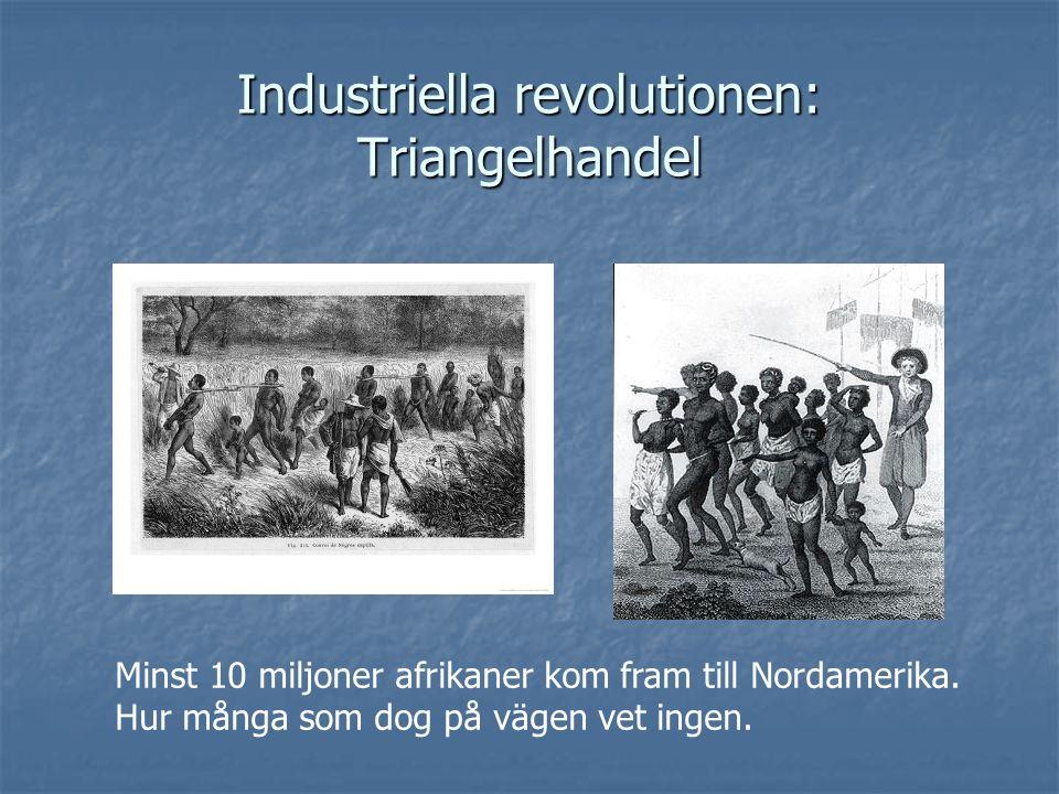 Industriella revolutionen: Triangelhandel Minst 10 miljoner afrikaner kom fram till Nordamerika. Hur många som dog på vägen vet ingen.