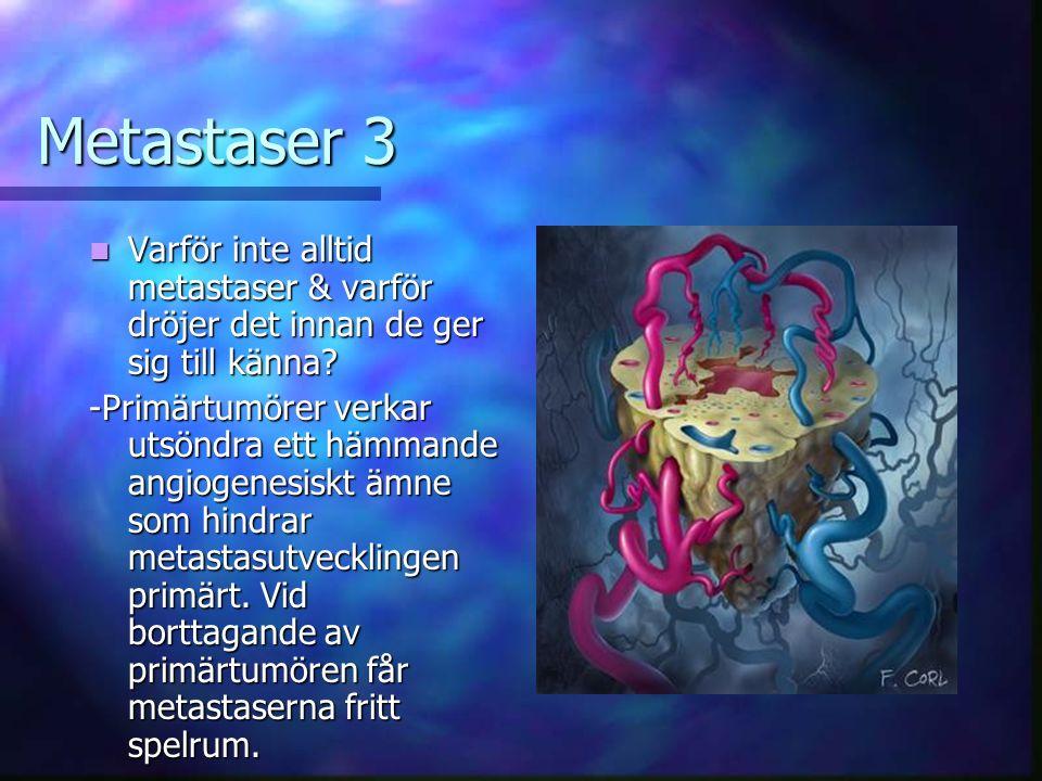 Metastaser 3 Varför inte alltid metastaser & varför dröjer det innan de ger sig till känna.