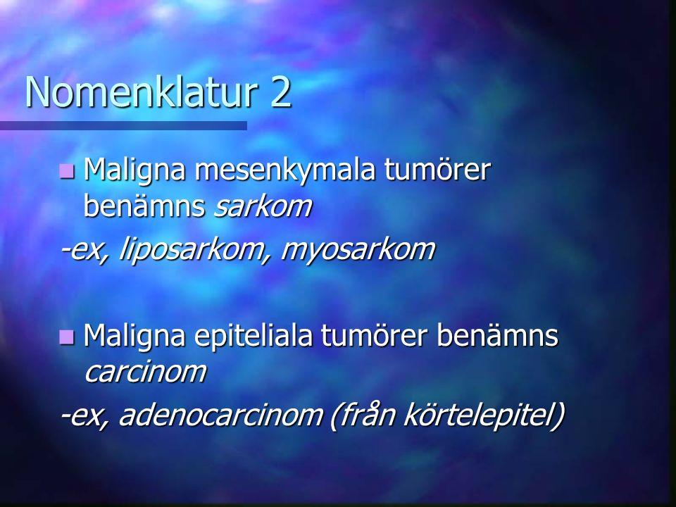Nomenklatur 2 Maligna mesenkymala tumörer benämns sarkom Maligna mesenkymala tumörer benämns sarkom -ex, liposarkom, myosarkom Maligna epiteliala tumörer benämns carcinom Maligna epiteliala tumörer benämns carcinom -ex, adenocarcinom (från körtelepitel)
