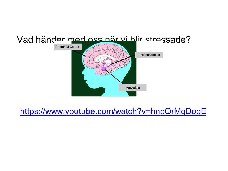 Förebygga stress Del I (Primärt skolbarn upp till 13 år) KASAM, självförtroende, förutsägbarhet och kontroll.