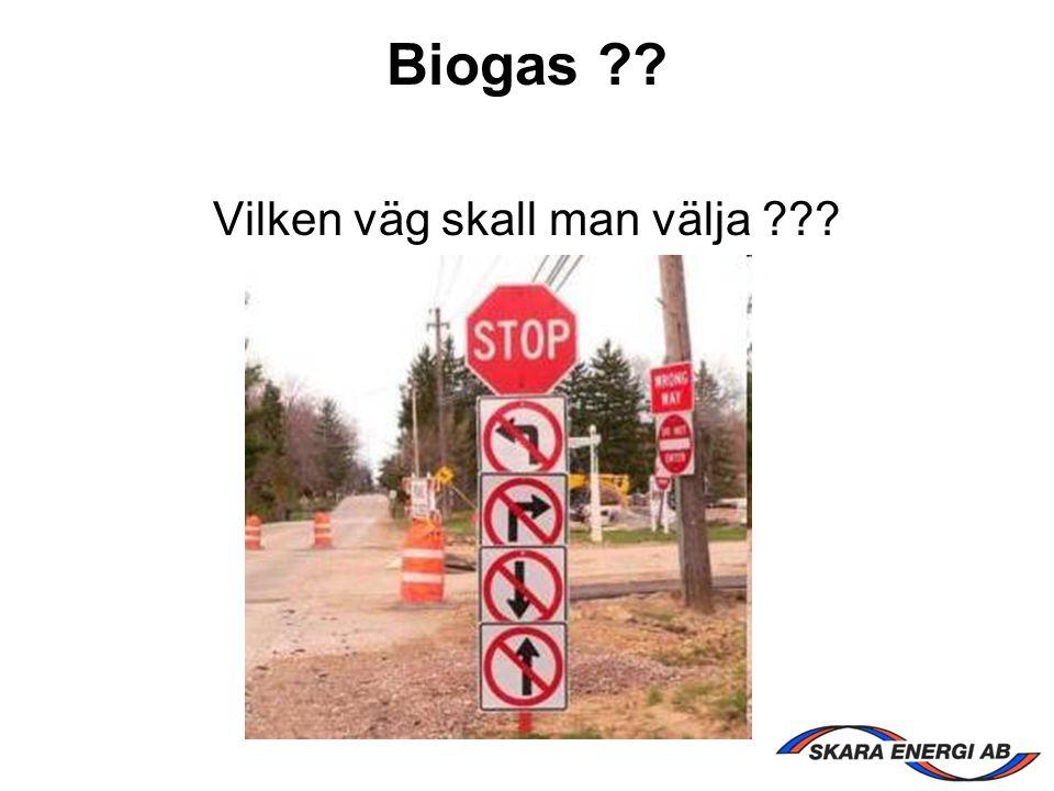 Biogas ?? Vilken väg skall man välja ???
