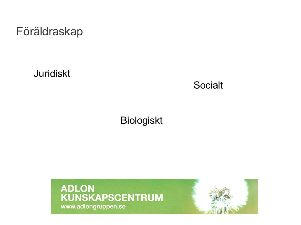 Föräldraskap Juridiskt Biologiskt Socialt