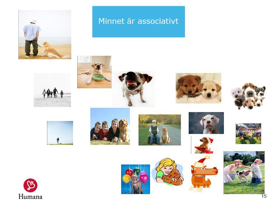 15 Minnet är associativt