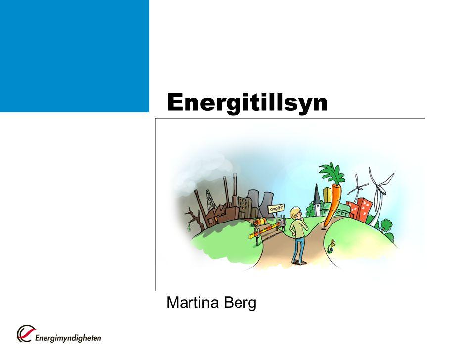 Energitillsyn Martina Berg