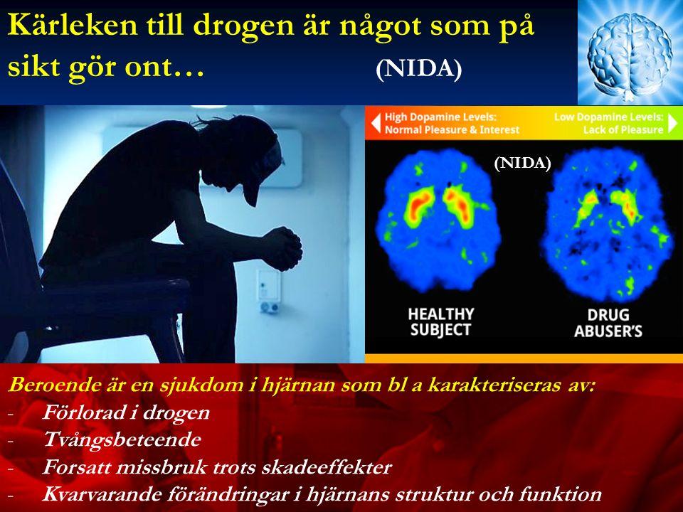 Kärleken till drogen är något som på sikt gör ont… (NIDA) Beroende är en sjukdom i hjärnan som bl a karakteriseras av: -Förlorad i drogen -Tvångsbeteende -Forsatt missbruk trots skadeeffekter -Kvarvarande förändringar i hjärnans struktur och funktion (NIDA)