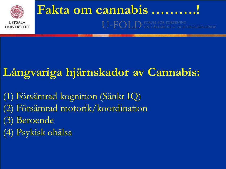 Fakta om cannabis ………..