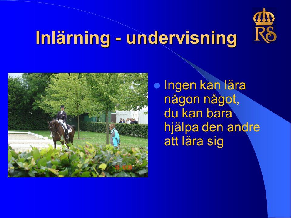 Inlärning - undervisning Ingen kan lära någon något, du kan bara hjälpa den andre att lära sig