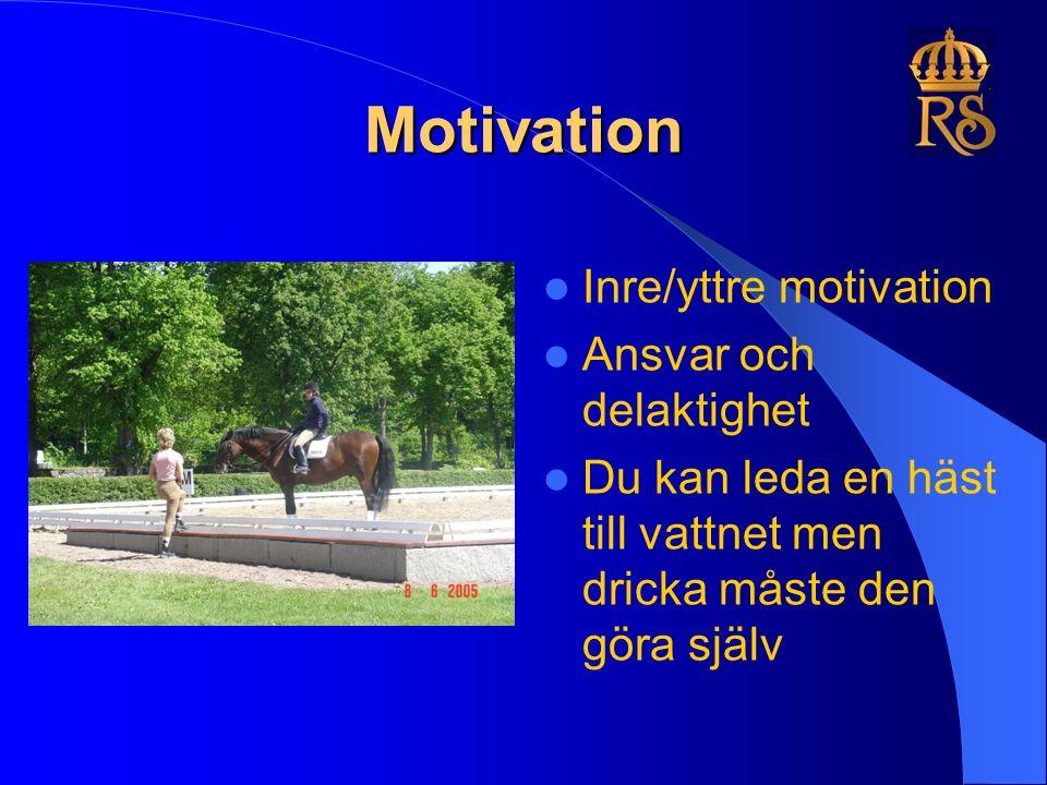 Motivation Inre/yttre motivation Ansvar och delaktighet Du kan leda en häst till vattnet men dricka måste den göra själv