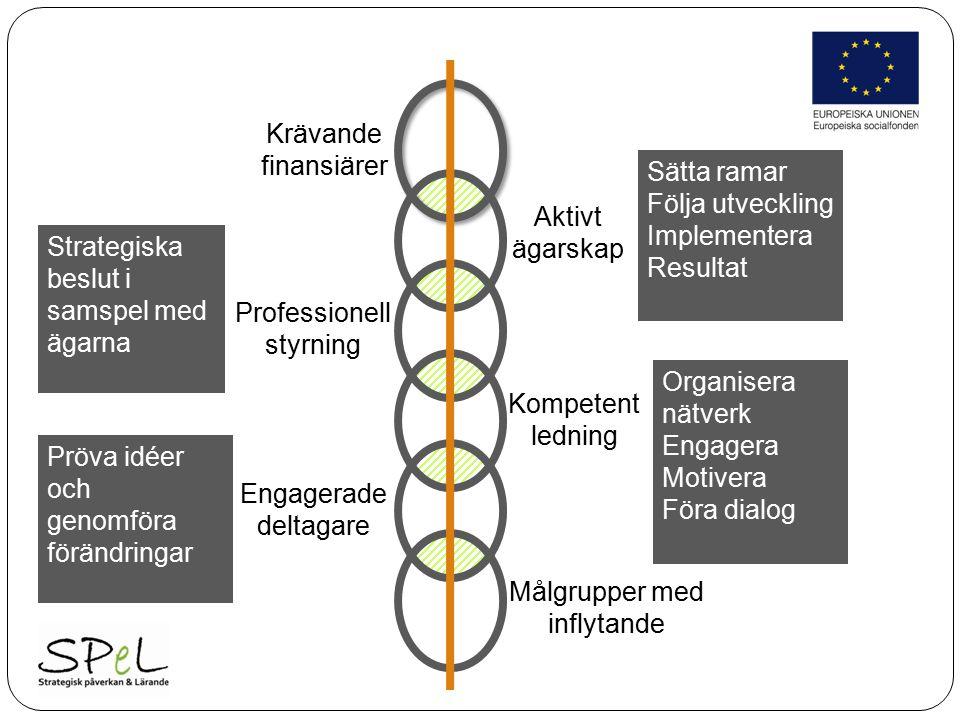 Aktivt ägarskap Professionell styrning Kompetent ledning Engagerade deltagare Sätta ramar Följa utveckling Implementera Resultat Strategiska beslut i samspel med ägarna Organisera nätverk Engagera Motivera Föra dialog Pröva idéer och genomföra förändringar Krävande finansiärer Målgrupper med inflytande