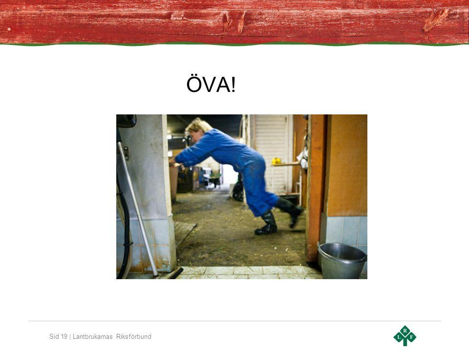 Sid 19 | Lantbrukarnas Riksförbund ÖVA!