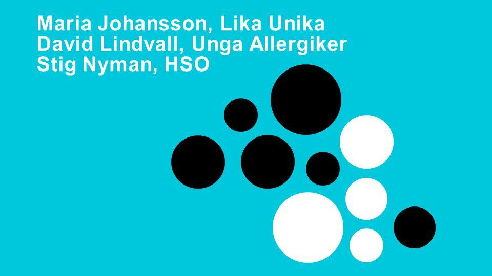Delaktighetsdagen 2015 Maria Johansson, Lika Unika David Lindvall, Unga Allergiker Stig Nyman, HSO
