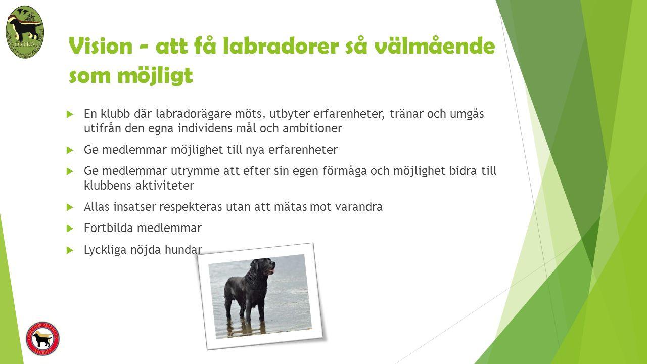 Vision - att få labradorer så välmående som möjligt  En klubb där labradorägare möts, utbyter erfarenheter, tränar och umgås utifrån den egna individ