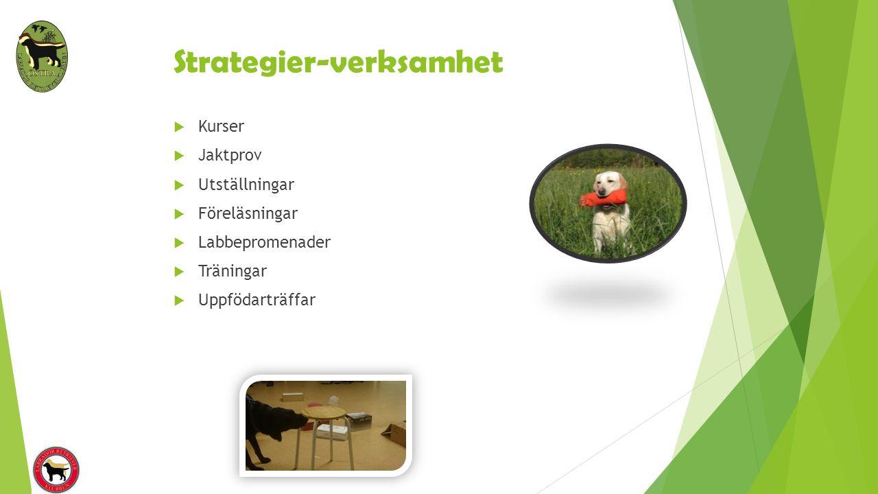 Strategier-verksamhet  Kurser  Jaktprov  Utställningar  Föreläsningar  Labbepromenader  Träningar  Uppfödarträffar
