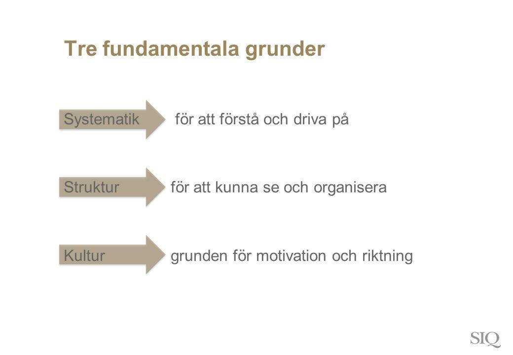 Tre fundamentala grunder Systematik för att förstå och driva på Struktur för att kunna se och organisera Kultur grunden för motivation och riktning