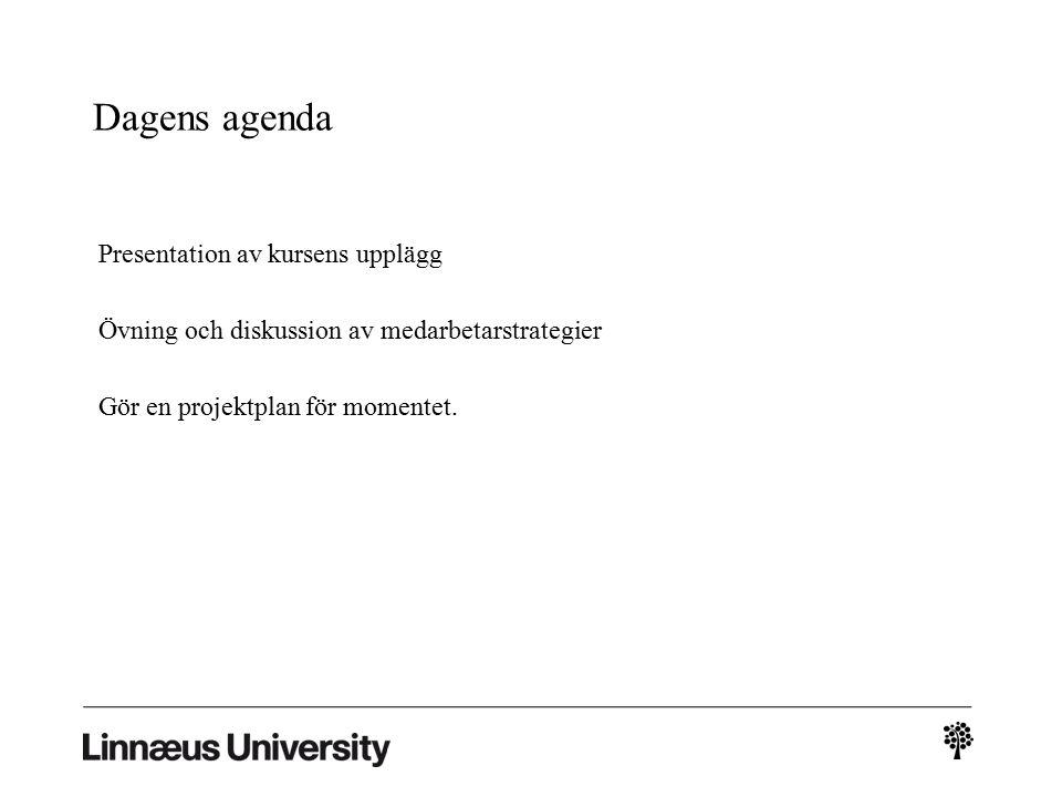 Dagens agenda Presentation av kursens upplägg Övning och diskussion av medarbetarstrategier Gör en projektplan för momentet.