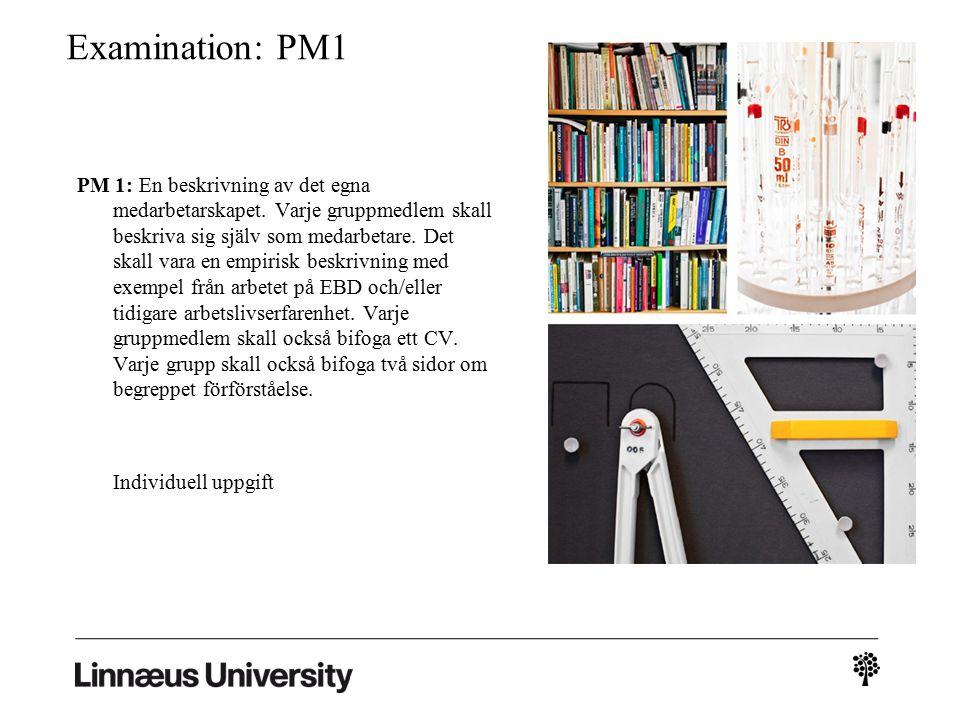 Examination: PM1 PM 1: En beskrivning av det egna medarbetarskapet.