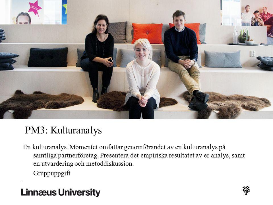 PM3: Kulturanalys En kulturanalys.