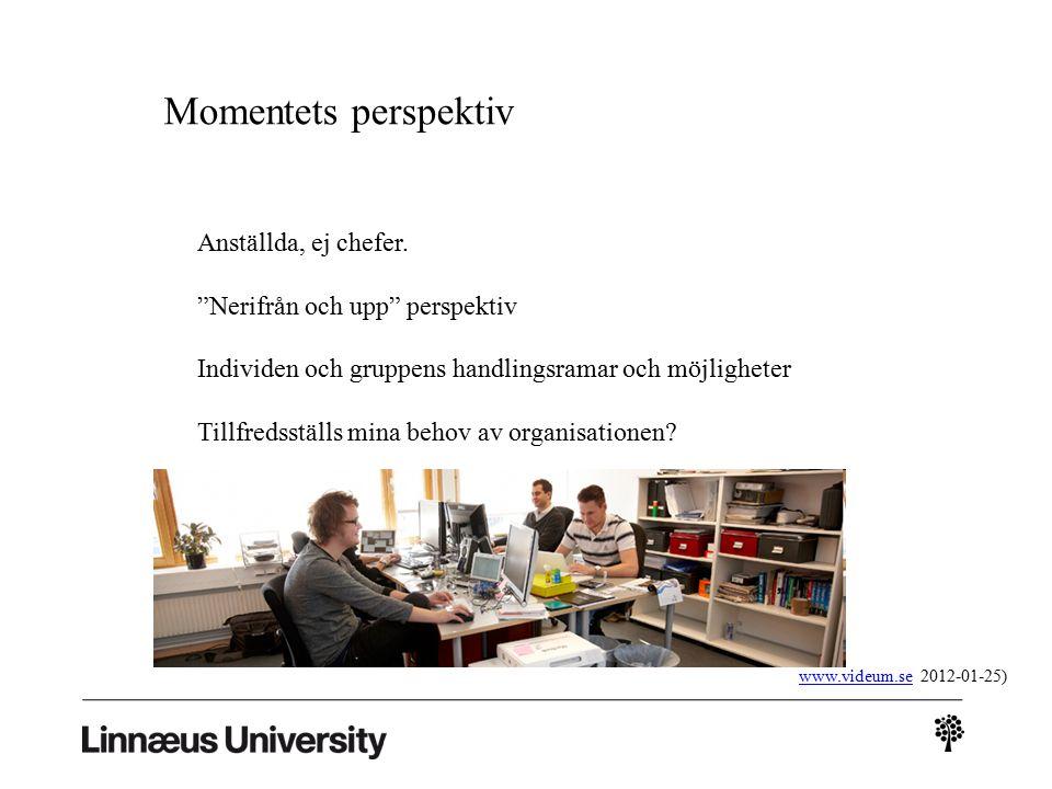 Momentets perspektiv (www.videum.se, 2012-01-25)www.videum.se Anställda, ej chefer.