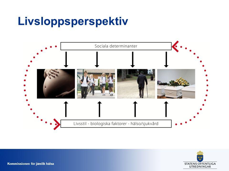 Kommissionen för jämlik hälsa Livsloppsperspektiv
