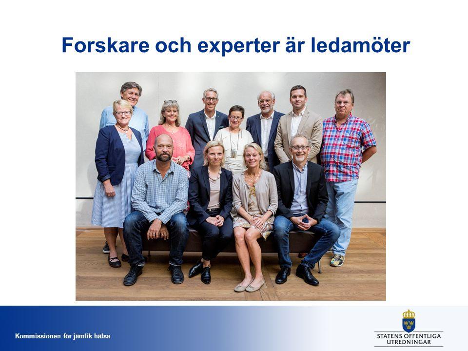 Kommissionen för jämlik hälsa Forskare och experter är ledamöter