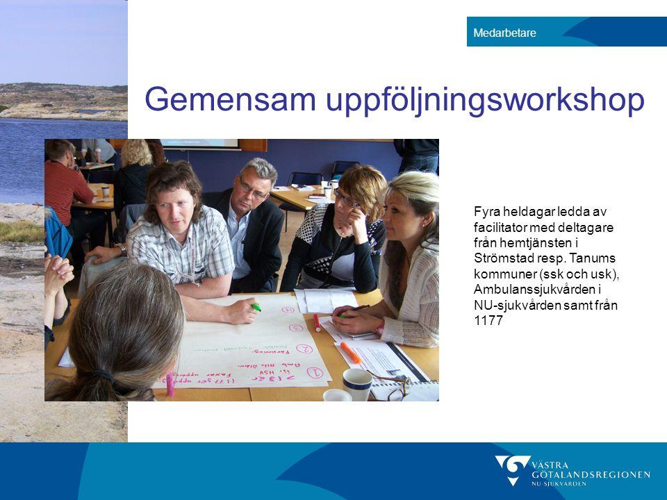 Gemensam uppföljningsworkshop Medarbetare Fyra heldagar ledda av facilitator med deltagare från hemtjänsten i Strömstad resp. Tanums kommuner (ssk och