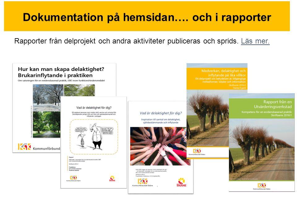 Dokumentation på hemsidan….