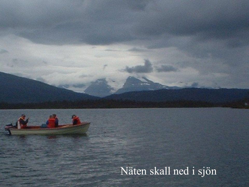 Näten skall ned i sjön