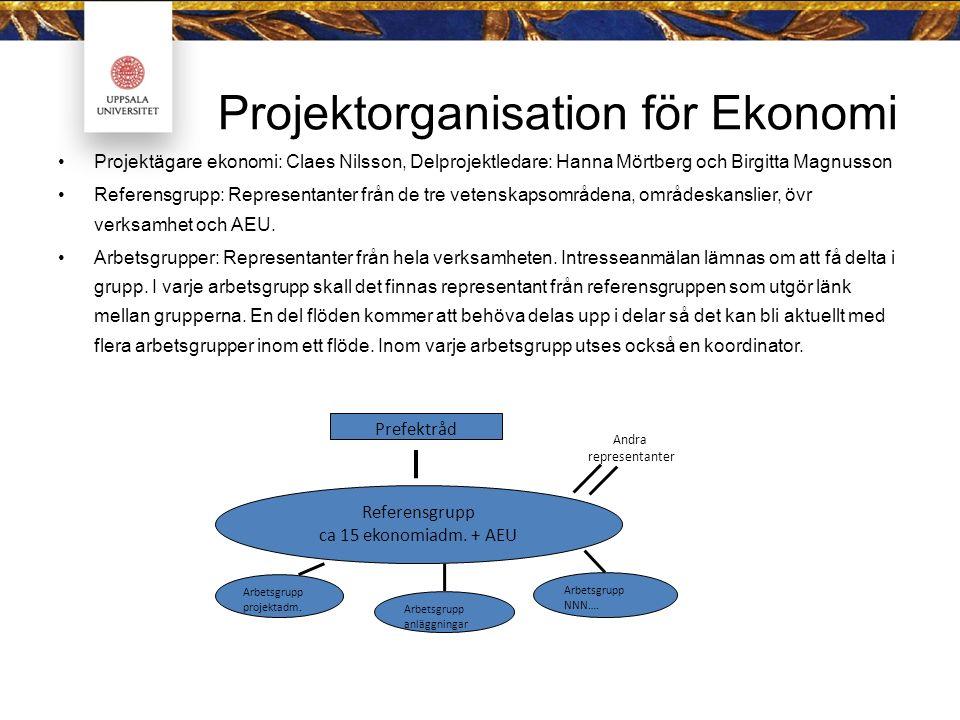 Projektorganisation för Ekonomi Projektägare ekonomi: Claes Nilsson, Delprojektledare: Hanna Mörtberg och Birgitta Magnusson Referensgrupp: Representa