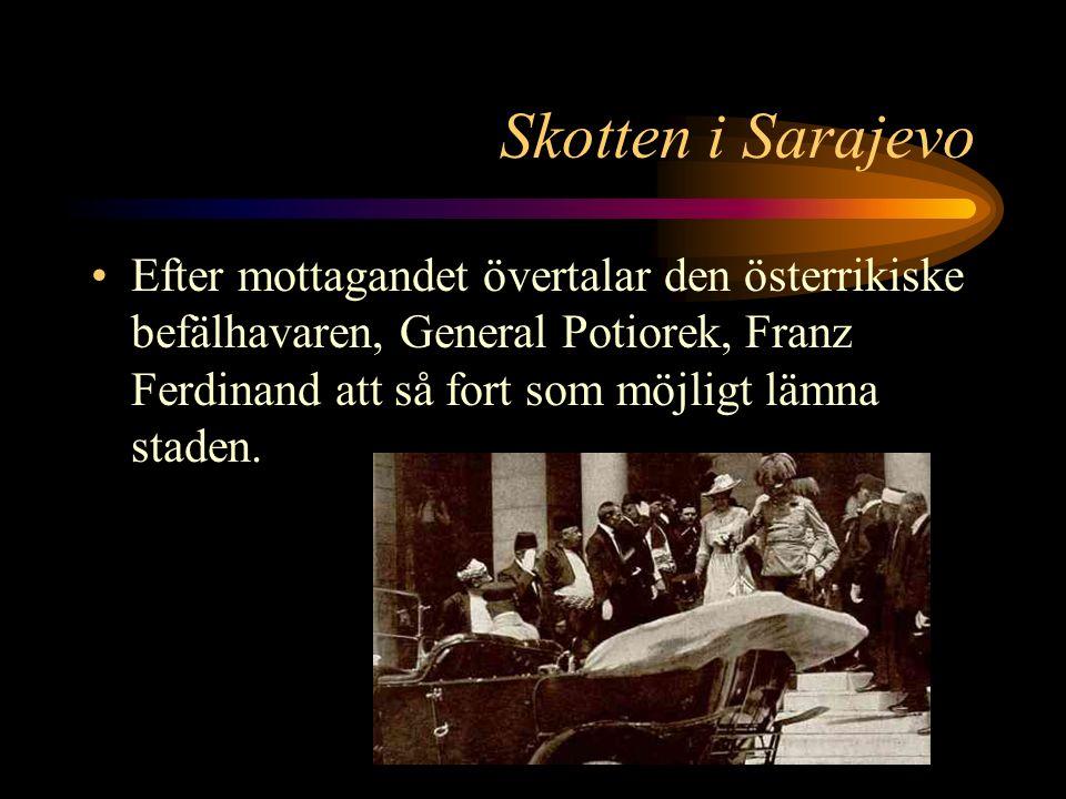 Skotten i Sarajevo Ärkehertigens följe åker snabbt till stadshuset utan att fler attentatsförsök görs.