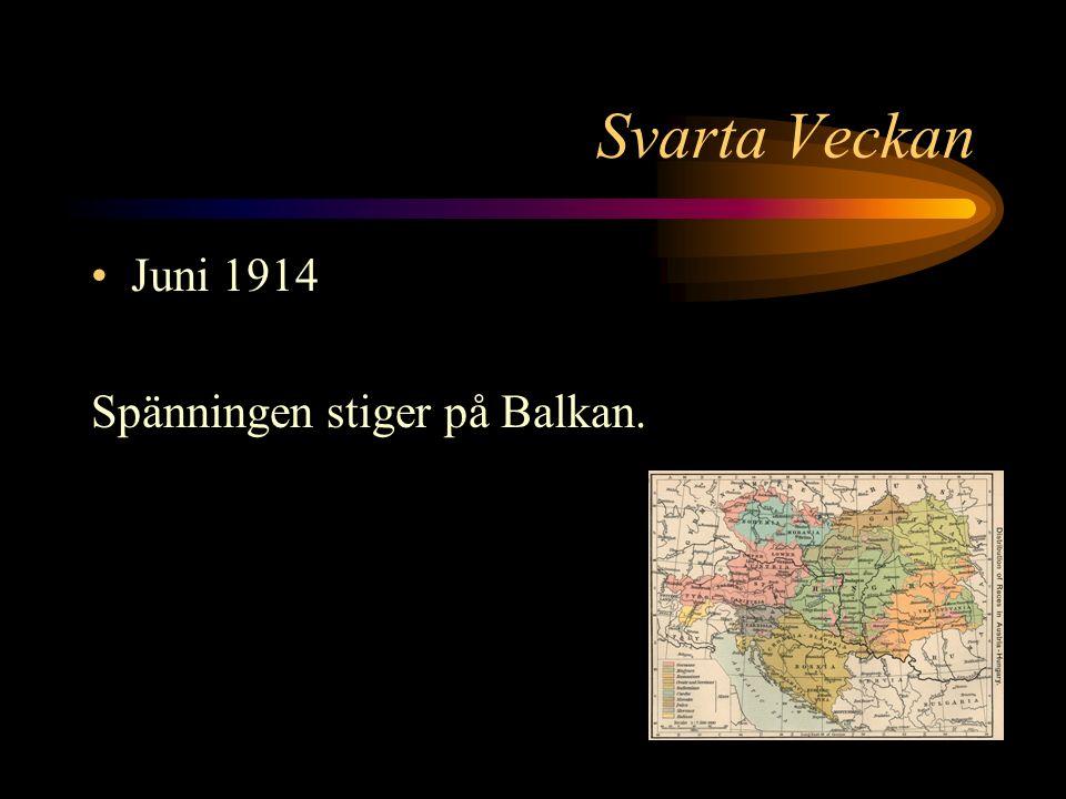 Skotten i Sarajevo Det andra skottet träffar Franz Ferdinand i nacken.