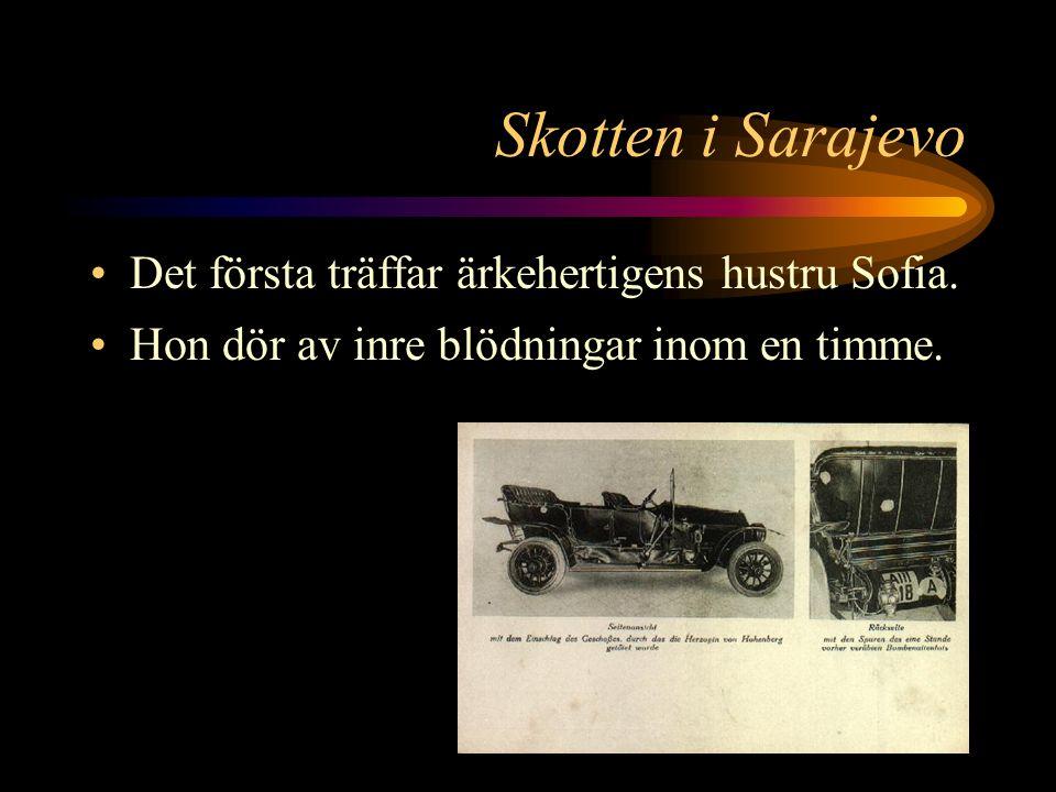Skotten i Sarajevo När bilen närmar sig kliver en 20-årig attentatsman fram och skjuter två snabba skott från sin automatpistol. Hans namn är Gavrilo