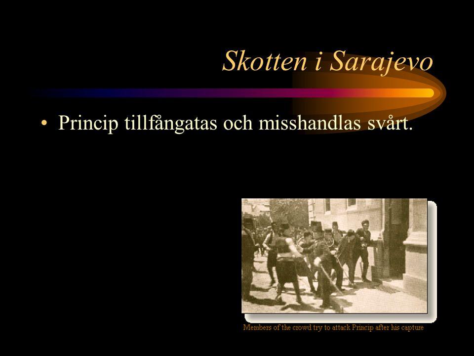 """Skotten i Sarajevo Det andra skottet träffar Franz Ferdinand i nacken. Hans sista ord är """""""