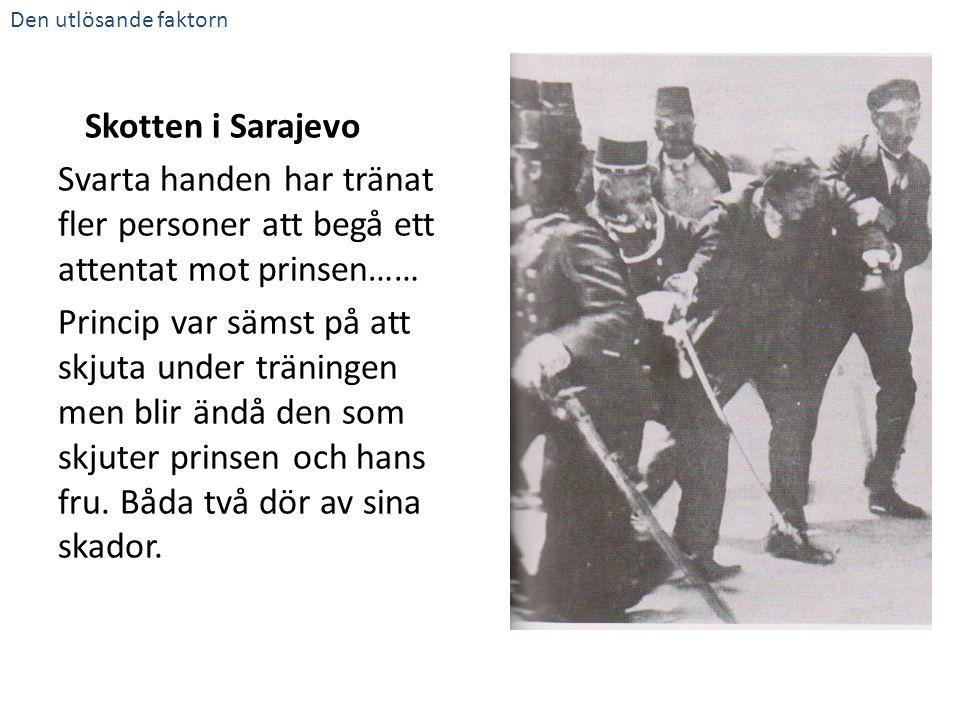 Svarta handen har tränat fler personer att begå ett attentat mot prinsen…… Princip var sämst på att skjuta under träningen men blir ändå den som skjut