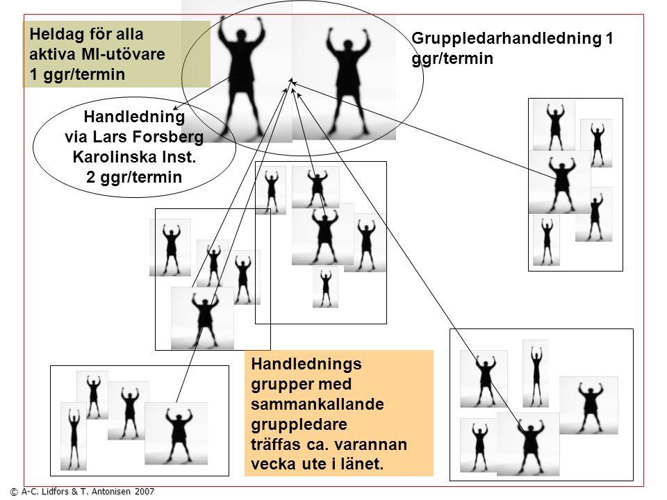 Gruppledarhandledning 1 ggr/termin Heldag för alla aktiva MI-utövare 1 ggr/termin Handledning via Lars Forsberg Karolinska Inst. 2 ggr/termin Handledn