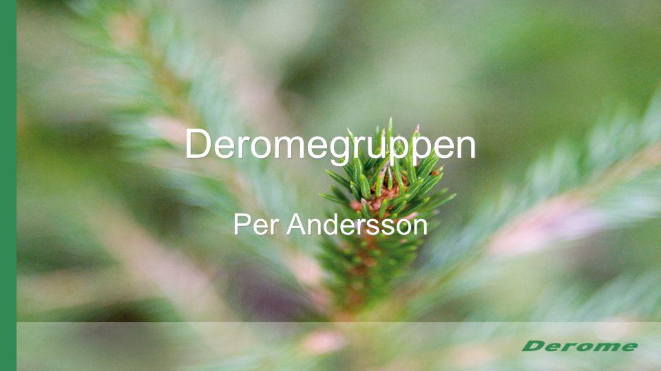 Deromegruppen Per Andersson