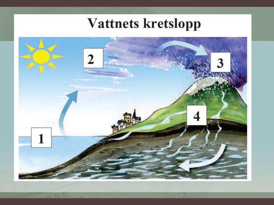DET LIVGIVANDE VATTNET (132-134)DET LIVGIVANDE VATTNET (132-134) Vårt dricksvatten – Det mesta av grundvattnet är salt.