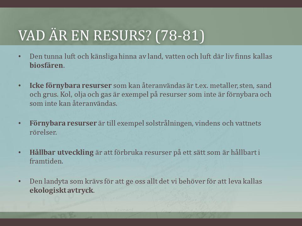 VAD ÄR EN RESURS. (78-81)VAD ÄR EN RESURS.