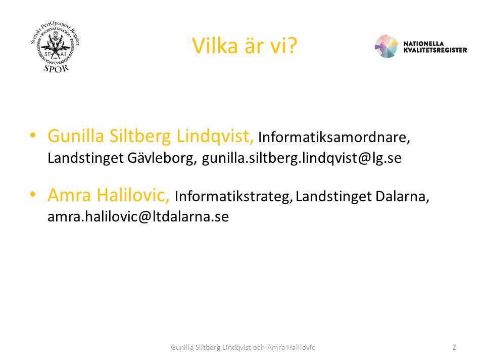 IDAG: 1.Uppdrag 2.Tillvägagångssätt 3.Några exempel Gunilla Siltberg Lindqvist och Amra Halilovic3