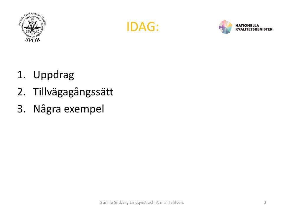 VARIABLER SOM MAPPAS Diagnos: ICD10-SE Åtgärder: KVÅ Övriga: SnomedCT Gunilla Siltberg Lindqvist och Amra Halilovic14