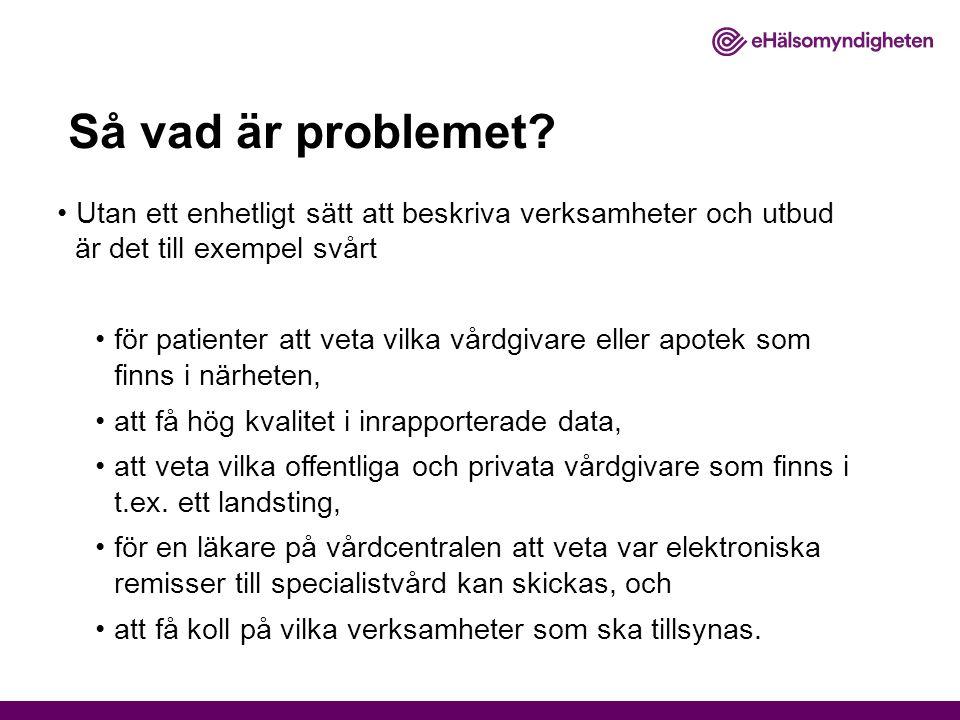Så vad är problemet? Utan ett enhetligt sätt att beskriva verksamheter och utbud är det till exempel svårt för patienter att veta vilka vårdgivare ell