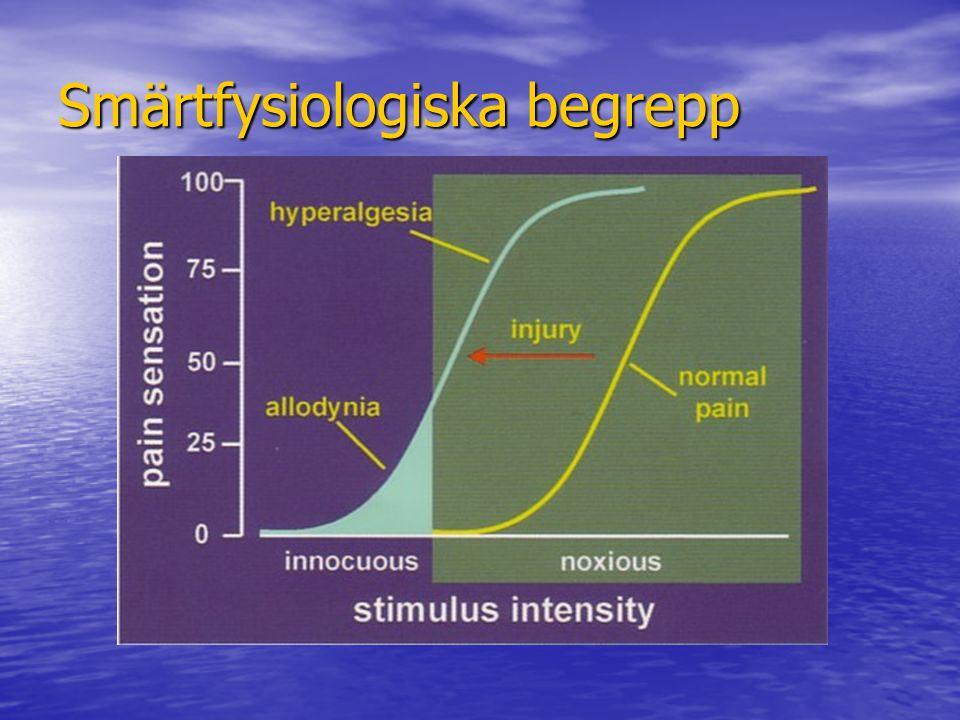 Smärtfysiologiska begrepp