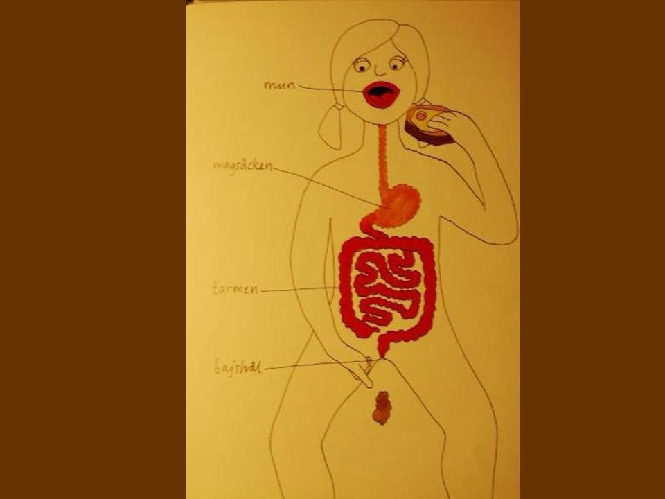 paracetamol(Alvedon,Panodil) codein (Citodon) Laktulos, Importal, Forlax, Movicol Laxoberal, Cilaxoral tabl/supp Primperan mirek.surowiak@geriatriker morfin, (Dolcontin) oxycodon (OxyContin) NSAID - (Diklofenak, Voltaren, Orudis, Naproxen, Brufen)