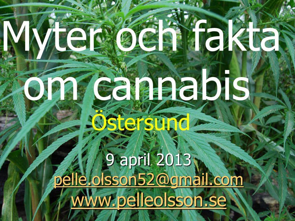 Myter och fakta om cannabis Östersund 9 april 2013 pelle.olsson52@gmail.com pelle.olsson52@gmail.com www.pelleolsson.se