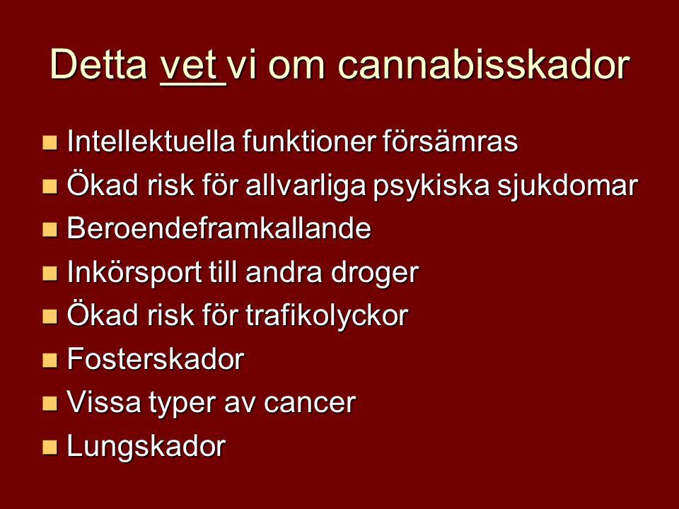 Detta vet vi om cannabisskador Intellektuella funktioner försämras Intellektuella funktioner försämras Ökad risk för allvarliga psykiska sjukdomar Ökad risk för allvarliga psykiska sjukdomar Beroendeframkallande Beroendeframkallande Inkörsport till andra droger Inkörsport till andra droger Ökad risk för trafikolyckor Ökad risk för trafikolyckor Fosterskador Fosterskador Vissa typer av cancer Vissa typer av cancer Lungskador Lungskador