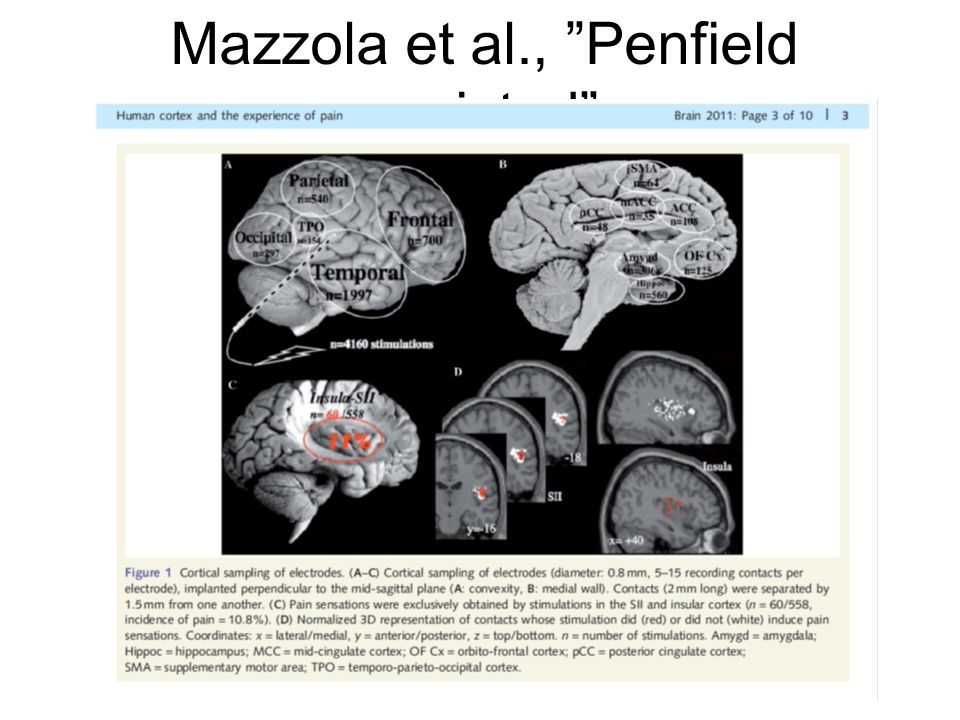 Mazzola et al., Penfield revisted