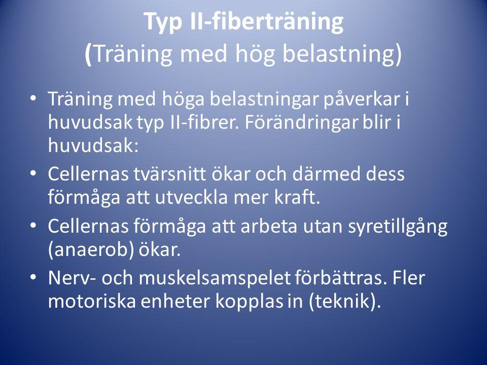 Typ II-fiberträning (Träning med hög belastning) Träning med höga belastningar påverkar i huvudsak typ II-fibrer. Förändringar blir i huvudsak: Celler
