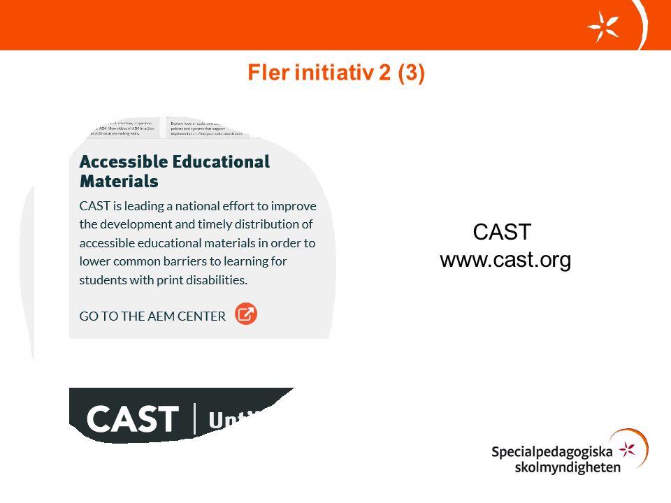 CAST www.cast.org Fler initiativ 2 (3)