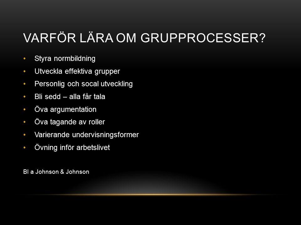 GRUPPROCESSER Grupprocesser är en beteckning på vad som sker inom en grupp och hur de enskilda gruppmedlemmarna agerar som en följd av det sociala samspel som äger rum och de åtgärder som en grupp utvecklar när den konfronteras med en uppgift (Hammar Chiriac 2003)
