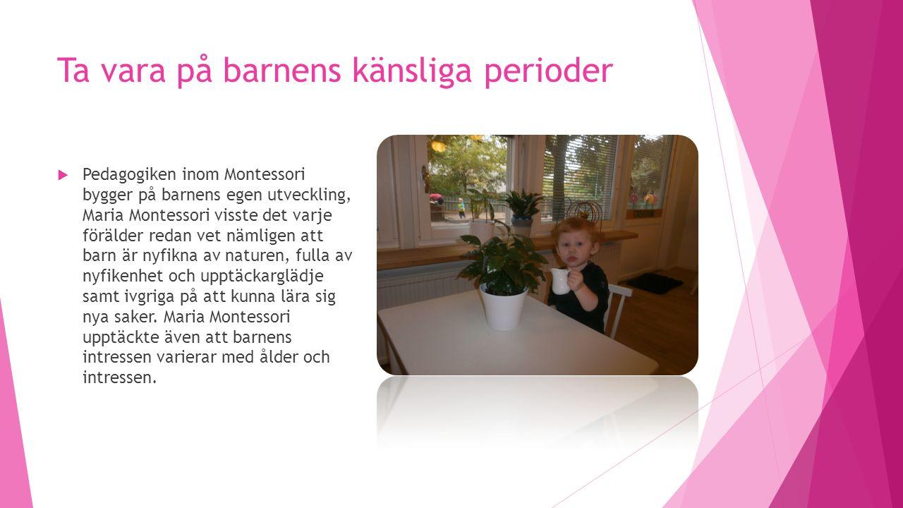 Ta vara på barnens känsliga perioder  Pedagogiken inom Montessori bygger på barnens egen utveckling, Maria Montessori visste det varje förälder redan vet nämligen att barn är nyfikna av naturen, fulla av nyfikenhet och upptäckarglädje samt ivgriga på att kunna lära sig nya saker.