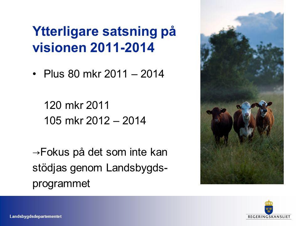 Landsbygdsdepartementet Ytterligare satsning på visionen 2011-2014 Plus 80 mkr 2011 – 2014 120 mkr 2011 105 mkr 2012 – 2014 →Fokus på det som inte kan stödjas genom Landsbygds- programmet